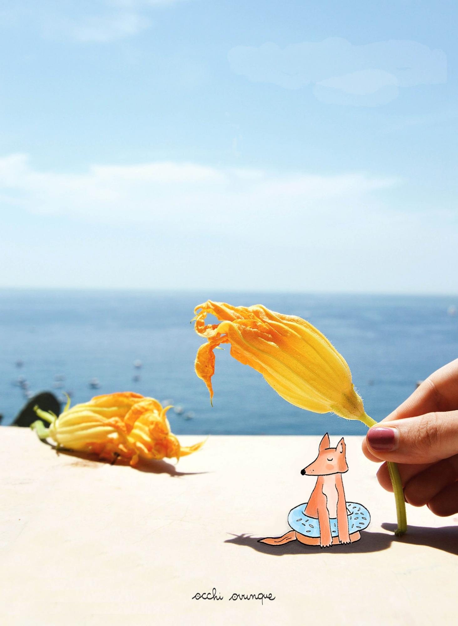 fiori di zucca fritti ricetta illustrata